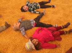 Emma, Alice, Bennett in the corn