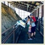 Quarry Exhibit Hall, Dinosaur NM