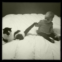Dots and Alice, tail puller.