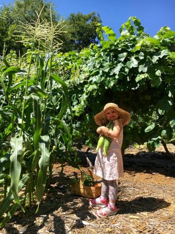 loving corn