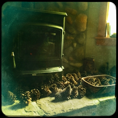 Pinecones by the fire, how cozy.