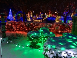 Garden Aglow at the Botanic Gardens in Boise, always a treat.
