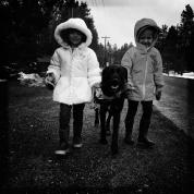 Dog friends forever