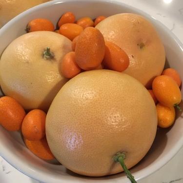 Citrus!